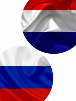 Письменный перевод с нидерландского на русский язык